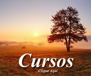 Cursos Online Oficiais do Foto Dicas Brasil