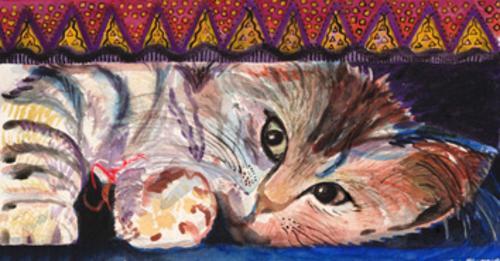 Sonia Madruga Tela gato Biriba Encerrada a exposição gratuita de fotografia: Rio, Eu Gosto de Você