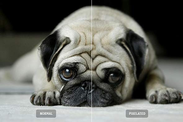 topten photography mistakes 7 Top 10 dos erros na fotografia digital