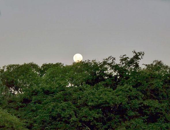 vladimirLua Transcarioca Lua, como fotografar?