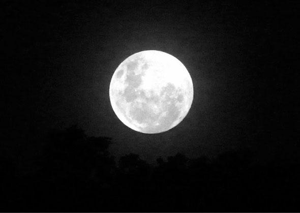 vladimir luabranca Lua, como fotografar?