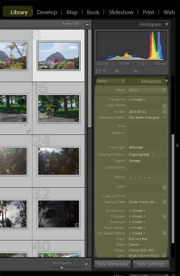 Metadados , essencial na fotografia digital
