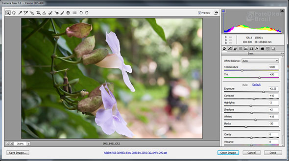 AdobeCameraRaw pequena Raw, isso é pra mim?