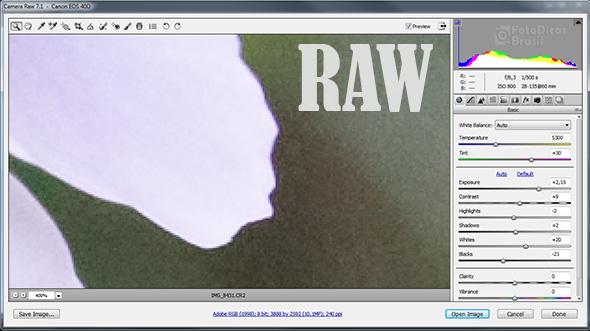 RAWCR pequena Raw, isso é pra mim?