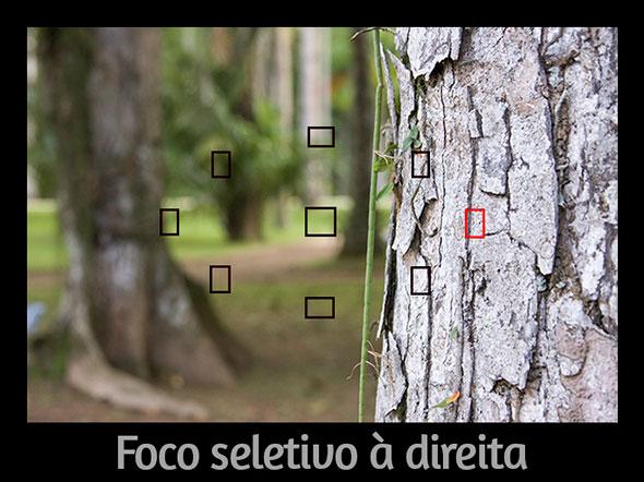 FocoSeletivoàdireita-  Foto do Artigo Qual o segredo para desfocar o fundo de uma foto