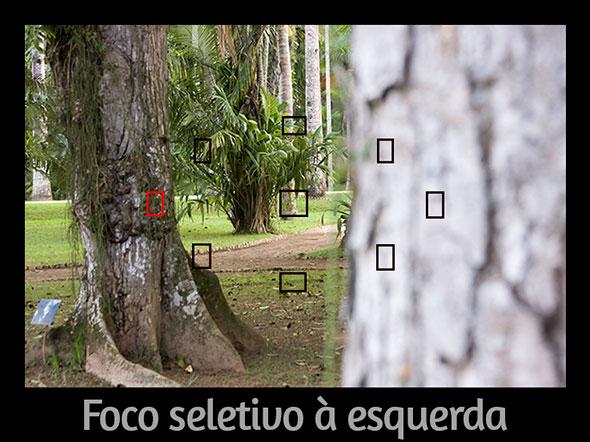 FocoSeletivoàesquerda Foto do Artigo Qual o segredo para desfocar o fundo de uma foto Qual o segredo para desfocar o fundo de uma foto?