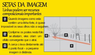 10 regras de composição das fotos e por que elas funcionam011 10 Regras de Composição Fotográfica (e por que elas funcionam!)