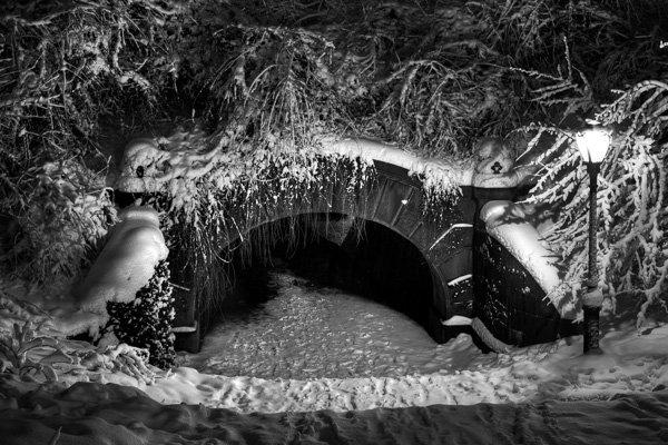6 HDR Central Park 10 Erros Comuns Cometidos Por Fotógrafos Iniciantes