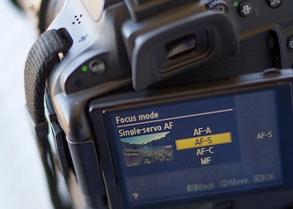 Imagem1 - Como Evitar Fotos Desfocadas Usando o Modo de Foco Automático Correto