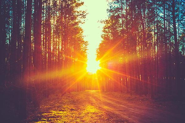 Sunset2 Artigo Dicas para Fotografar Por do Sol 14 Dicas Para Fotografar Um Pôr do Sol Impressionante