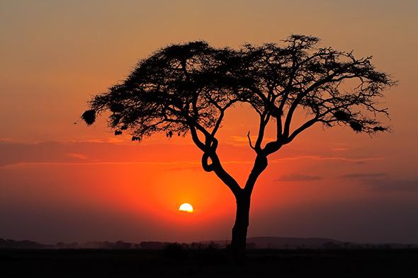 Sunset3 Artigo Dicas para Fotografar Por do Sol 14 Dicas Para Fotografar Um Pôr do Sol Impressionante