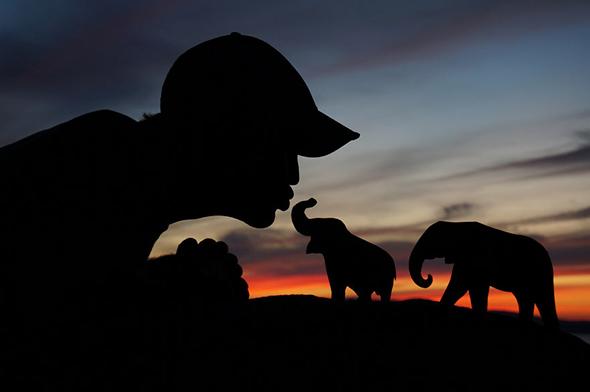 Mini Elefantes Silhuetas Mágicas