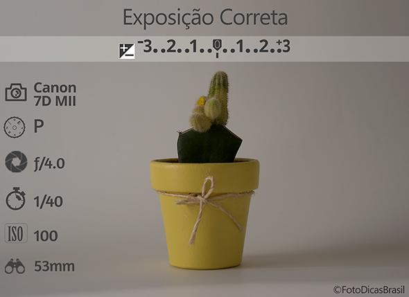 1CompensaçaoFundoBranco FotometriaCorreta Low Compensação de Exposição (EV+/ )