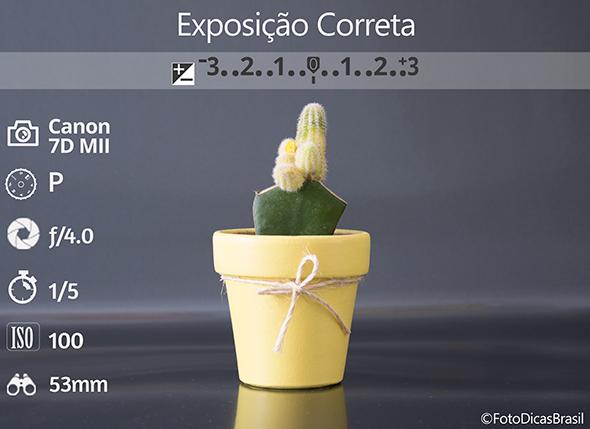 4CompensaçaoFundoPreto FotometriaCorretaLow Compensação de Exposição (EV+/ )