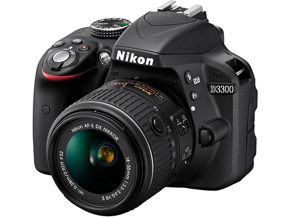 Nikon D3300 Posso Fotografar Profissionalmente com uma Câmera de Entrada?