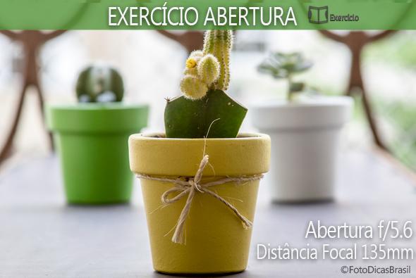 4.ExercicioAberturaResultadosF3.5a120cm Exercício Para Treinar Sua Abertura