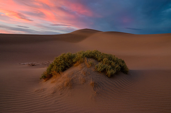 9Mesquite Dunes 960x640 Guia Completo de Distância Hiperfocal