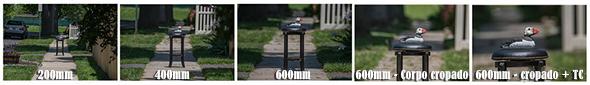 Focal length side by side 960x138 Como Fotografar Pássaros Voando